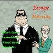 Play Escape Maniac Game