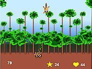 Play Super Racoon Game