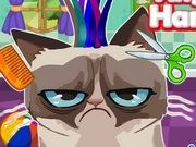 Play Angry Cat Hair Salon Game