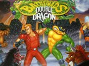 Play Battletoads and Double Dragon Game