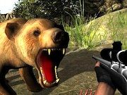 Play Bear Hunter 3D Game