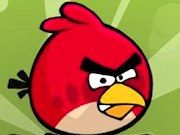 Play Crazy Angry Birds Game