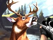 Play Deer Hunter 3D Game