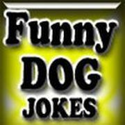 Play Dog Joke Shooter Game