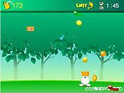 Play Fruity Basket Game