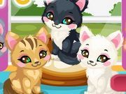 Play Kitty Care 2 Game