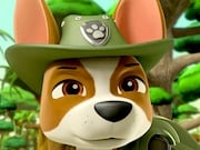 Play Paw Patrol Jungle Rescue Game