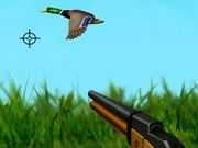 Play The Duck Hunter Game