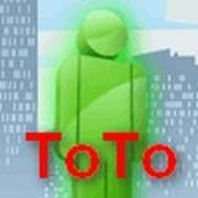 Play ToTo Game